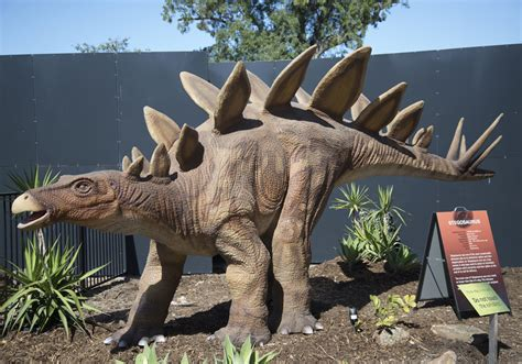alive dinosaurs adelaide indaily