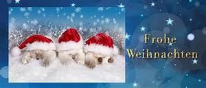 Schöne Bilder Facebook : facebook titelbilder weihnachtsbilder lizenzfrei kostenlos downloaden ~ Orissabook.com Haus und Dekorationen
