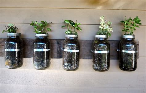 Jar Vertical Garden by 8 Ways To Create Your Own Herb Garden Reliable Remodeler