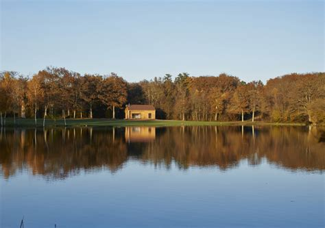 chambre hote a vendre cottage en forêt golf de sologne location de cottages