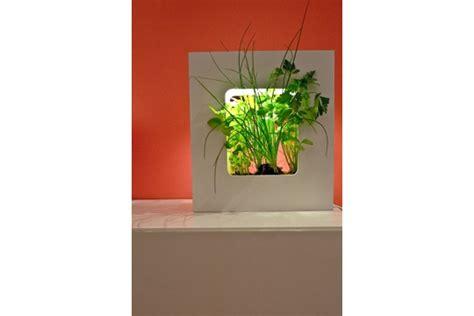 Un Luminaire Végétal Et écolo  Mur Végétal  Faites Le