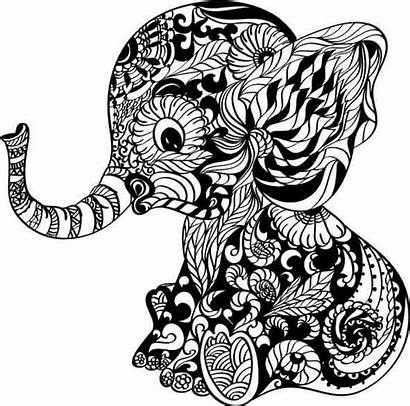 Mandala Elephant Svg Clipart Drawing Coloring Pages
