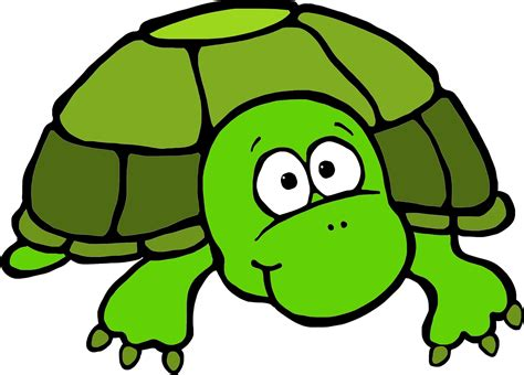 free clipart downloads turtle clip black and white image