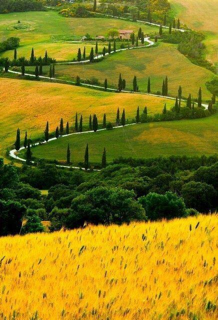 camino toscano la toscana italia camino en zig zag wanderlust