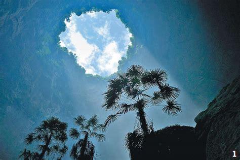 palm tree sits   ridge   sinkhole  xuanen