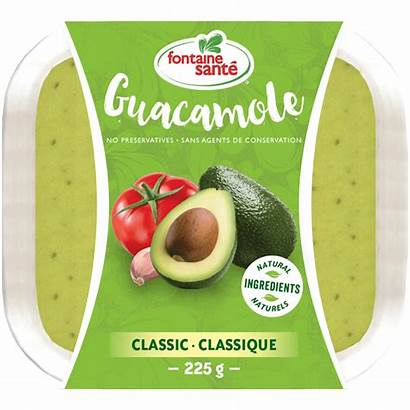 Guacamole Classic Tofu Fontaine Salad Summer Dips