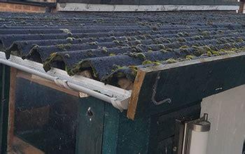 asbestos fibres friable chrysotile merryhill