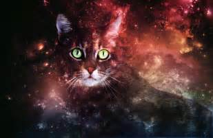 galaxy cat rin r0 s deviantart gallery