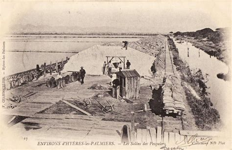 hy 232 res les palmiers 83 var cartes postales anciennes sur cparama