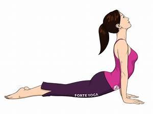 Upward Facing Dog Yoga Pose - Forte Yoga