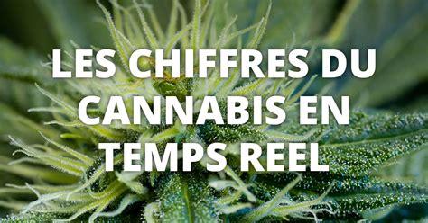 combien co 251 te le cannabis dans le monde