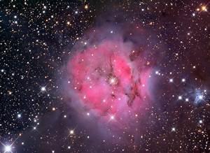 The Cocoon Nebula  A Reflection  Emission Nebula In Cygnus