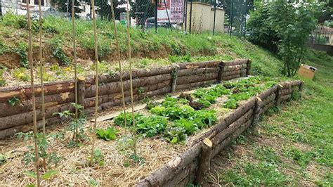 orti in terrazza orto scuola vicchio orto a terrazza nel sentiero le