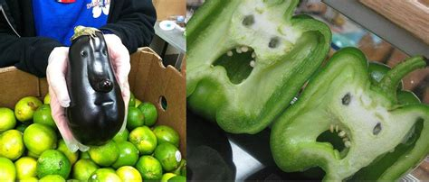 funny  fruits  vegetables usefuldiycom