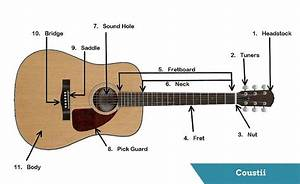 Guitar U2019s Anatomy  Parts Of An Acoustic Guitar