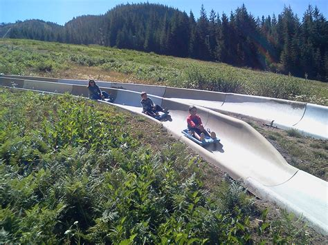 The Alpine Slide Near Portland That Will Take You On A