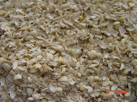 cotton seed hull from rizhao senkawa trading com ltd china