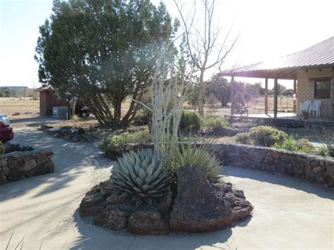 chihuahuan desert gardens davis mountains state park fort davis reviews of davis mountains state park tripadvisor