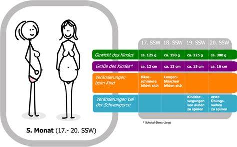 Gewichtszunahme zwillingsschwangerschaft tabelle