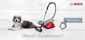 Haare Vom Teppich Entfernen : hundehaare vom sofa entfernen tierisch wohnen ~ Bigdaddyawards.com Haus und Dekorationen