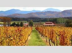 Virginia is for Wine Lovers A Road Trip Across Virginia
