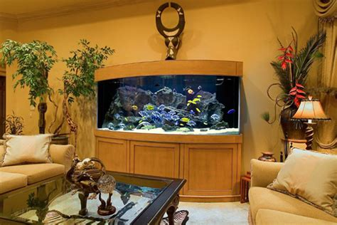 modern aquarium design   interior house