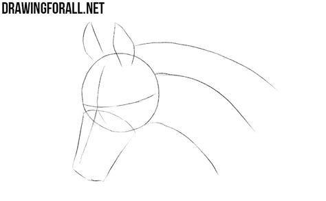 draw  horse head drawingforallnet