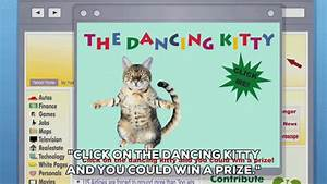 Cat Dancing GIF by South Park - Find & Share on GIPHY