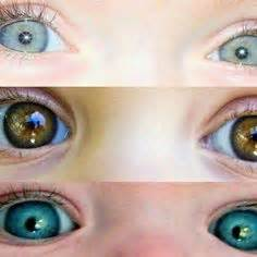 infant eye color eye color chart interesting facts about the different