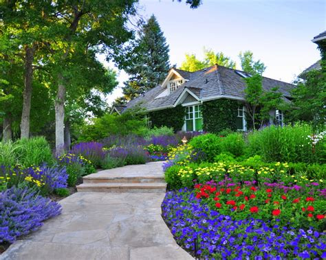 front yard renovation ideas front yard renovation traditional landscape other by designscapes colorado inc