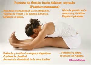 Yoga – Ejercicios: Postura de Flexión hacia delante
