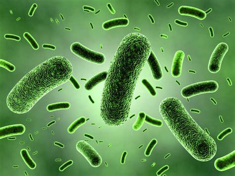 bacteria spread in secrecy