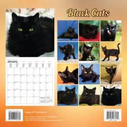 cat calendar cats black 2017 wall calendar 9781617916489