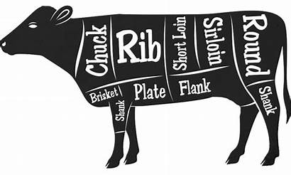 Cuts Meat Cow Cma Resolutions Anything Ask