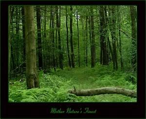 Mother Nature's Finest by JoeRiceDesigns on DeviantArt