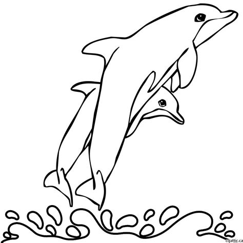 cartoon dolphin drawing   steps  photoshop
