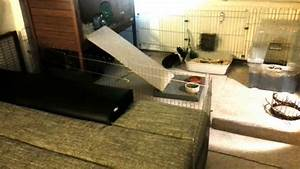 Hundehaus Für Die Wohnung : kaninchenstall erweiterung f r die wohnung youtube ~ Buech-reservation.com Haus und Dekorationen