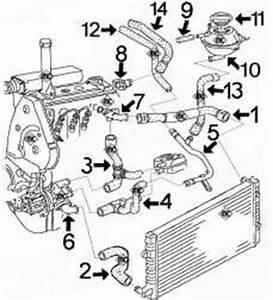 Calage Distribution Golf 4 Tdi 110 : circuit de refroidissement inca 1 9 diesel moteur 1y de 64cv avant 2003 alpazo pi ces ~ Medecine-chirurgie-esthetiques.com Avis de Voitures