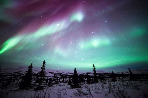 denali national park northern lights stunning images of america 39 s public lands newsday