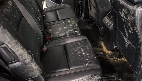 Baking Soda Wet Carpet by So You Left The Windows Down And It Rained How To Dry