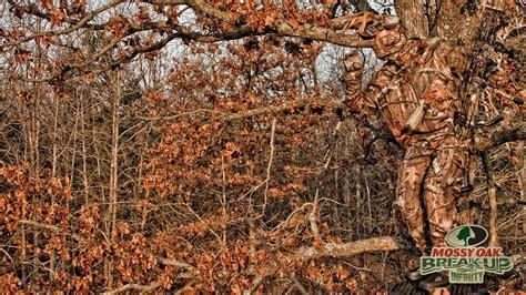 Real Tree Camo Wallpaper Mossy Oak Break Up Wallpaper Wallpapersafari