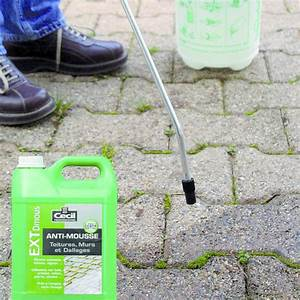 Traitement Anti Mousse : anti mousse toiture dallage cecil professionnel ~ Farleysfitness.com Idées de Décoration