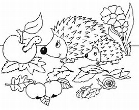 HD Wallpapers Apple Orchard Coloring Pages