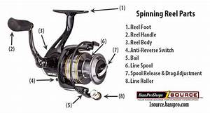 Buying Guide  Picking The Best Spinning Reel