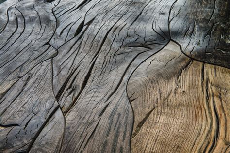 bog oak  sunshine floor supplies  hardwood floors
