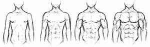 Body Types by chaosbringer99 on DeviantArt
