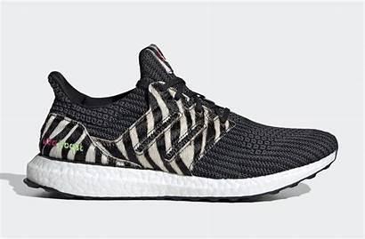 Dna Adidas Boost Ultra Animal Pack Zebra