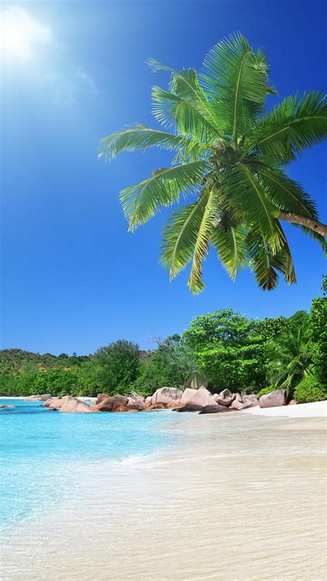 tropical beach scenes wallpaper wallpapersafari