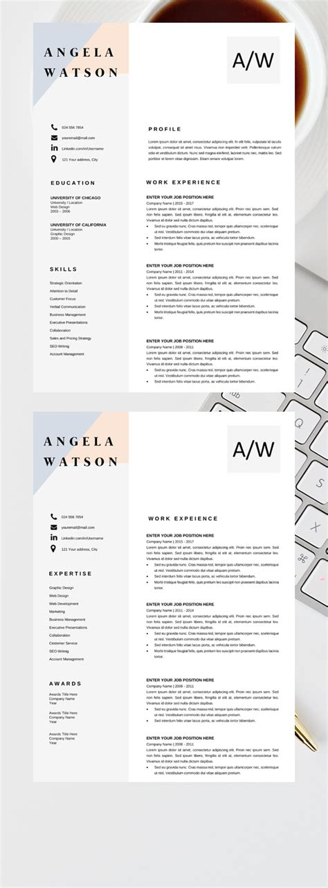 Professional Looking Cv Templates by Professional Cv Template Word Resume Template Instant