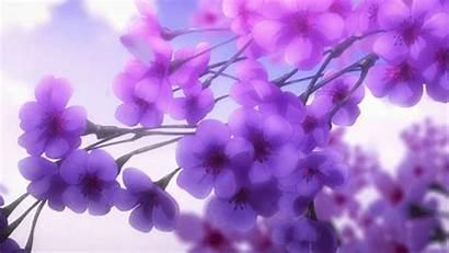 Anime Flowers Gifs Ravens Tokyo Purple Flower